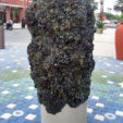 Barnacle Piling, 2009<br>Bronze<br>2.5'x5'<br>Photo courtesy Jud Fine<br>Jud Fine